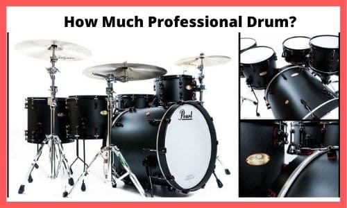 professional drum set cost